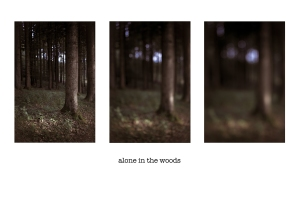 aloneinthewoods