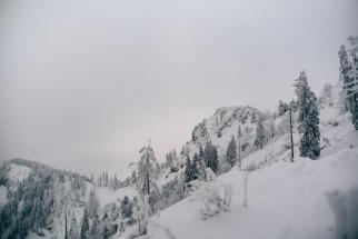 2018_12-31